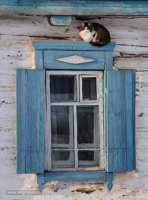 котов руслан фото